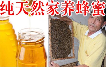 仅售19.8元,原价25元纯天然家养蜂蜜1斤;5斤起售,河源市区范围免费配送;100%家养蜂蜜,润肺、止咳、清咽、滋阴,一家人早晚必喝的养生蜜!只有拉你去团购网才有这样的优惠哦~