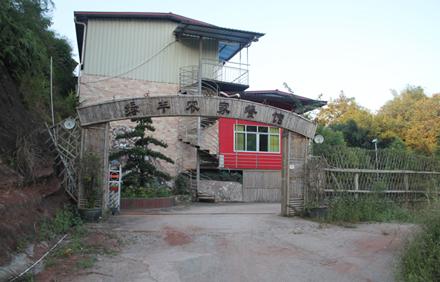 【龙川县】绿丰农家餐厅九斤雄鱼八味八人套餐,仅售318元,尊享市场价358元
